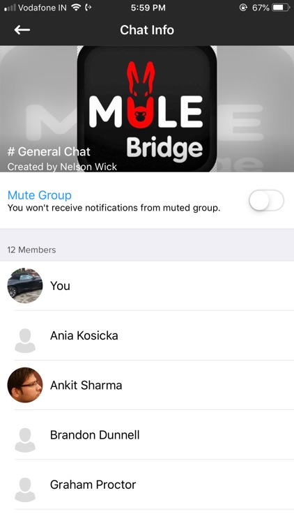 MULE Bridge