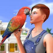 家 鹦鹉 sim卡 宠物 世界 游戏