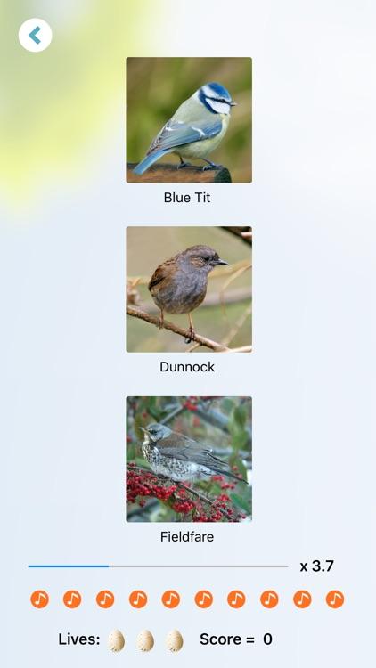 Chirp! Bird Songs UK & Europe screenshot-5