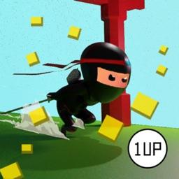 Ninja Blitz!