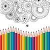 colour:秘密花园数字填色画图