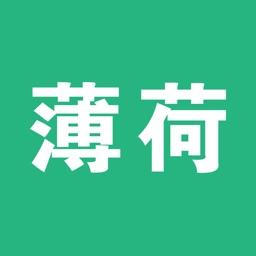 薄荷-STICKER
