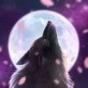 Moonlight - nonogram - iPhoneアプリ