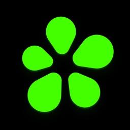 ICQ: Messenger & Video Calls