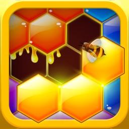 Hexa Hive Puzzle