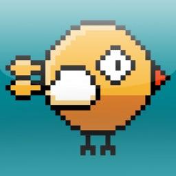 Swipe the birds