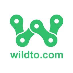 Wildto Intl
