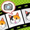 toruneko (KittyCam)