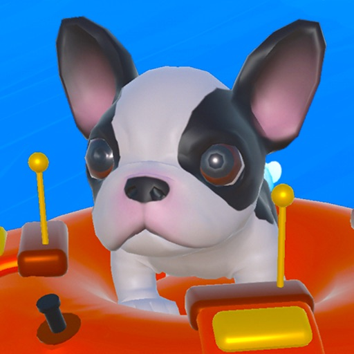 Rafting Dog