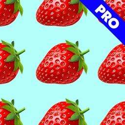 Pattern Maker Pro