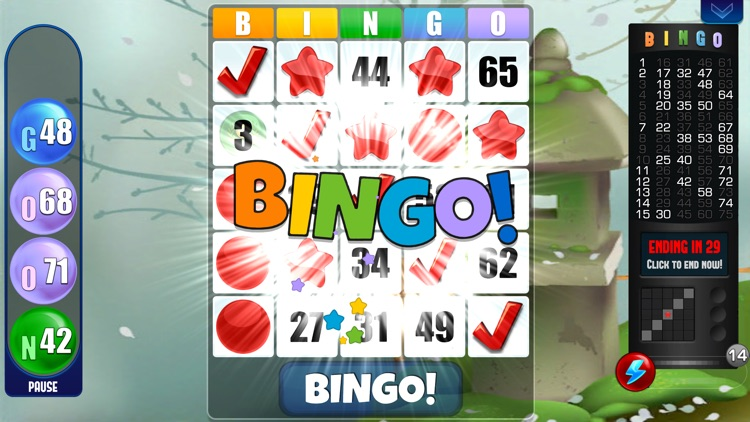 Bingo! Absolute Bingo Games screenshot-5
