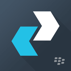‎BlackBerry Enterprise BRIDGE