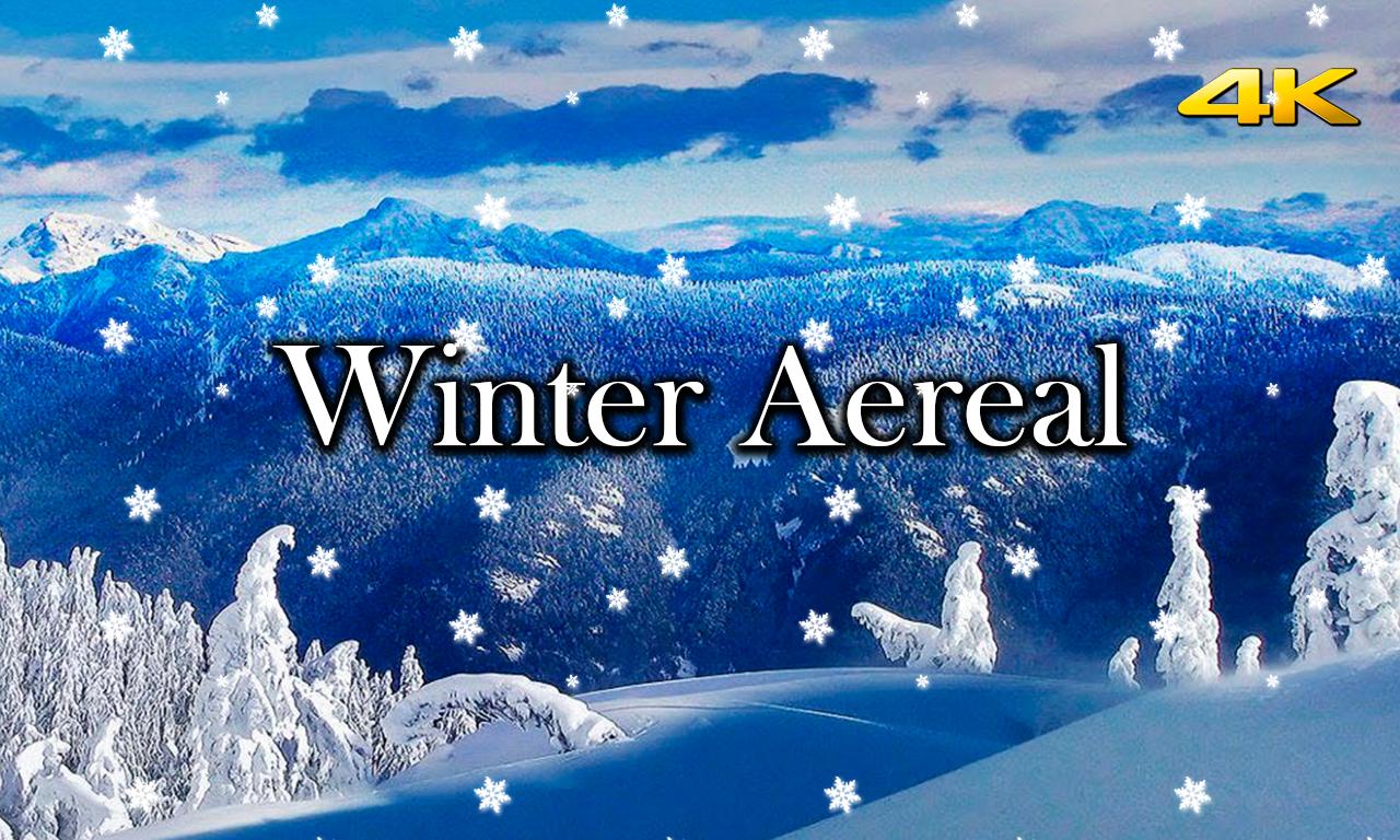 Winter Aereal
