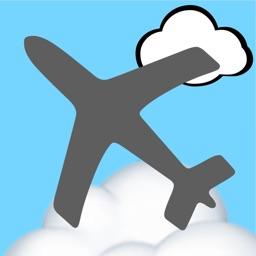 Flight Weather