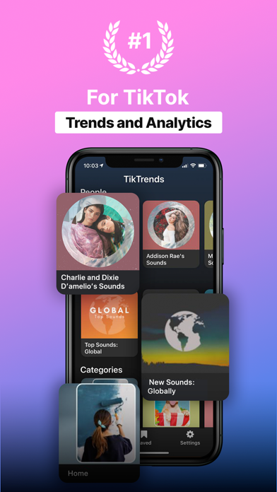TrendTok Analytics Screenshot