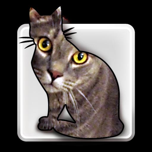 ID Image Catalog