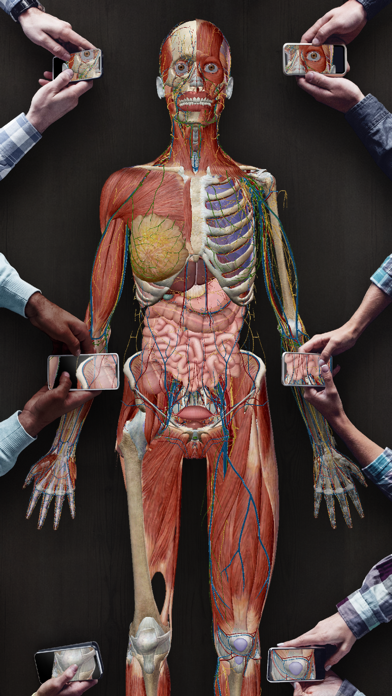 Atlas d'anatomie humaine 2021