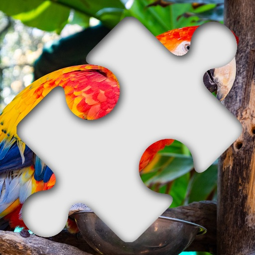 Jigsaw Photo Puzzle Deluxe