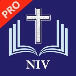 NIV Bible Pro