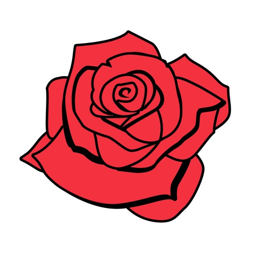 Petals around roses