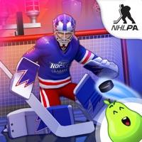 Puzzle Hockey Hack Resources Generator online