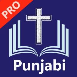 Punjabi Bible Pro (Revised)