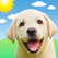 Weather Puppy Forecast + Radar