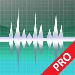 WavePad Professionale