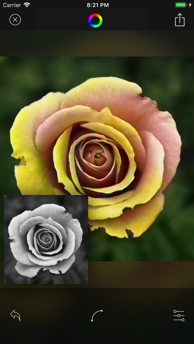 Deep Color - AIを利用した自動カラーのおすすめ画像7