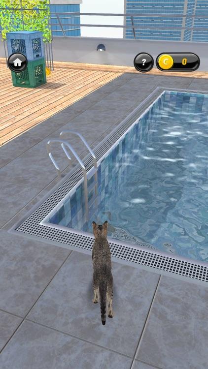 My Kitten (Cat Simulator) screenshot-3
