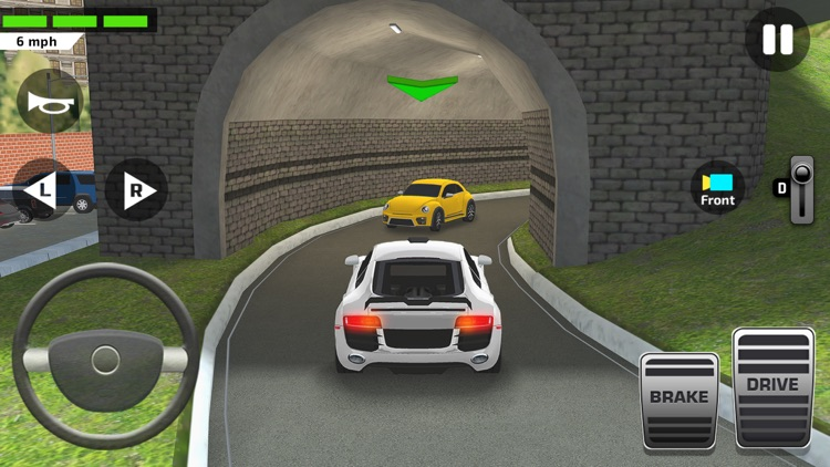 Driving Test Simulator Game screenshot-6