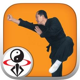 Shaolin Kung Fu Fundamental