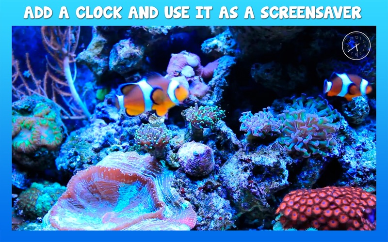 Aquarium 4K for Mac