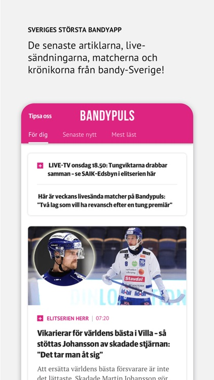 Bandypuls