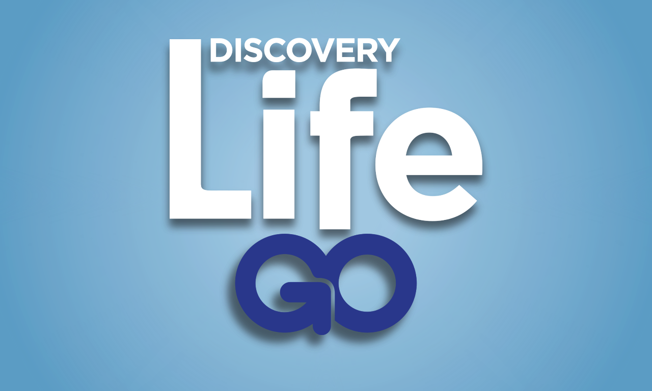 Discovery Life GO