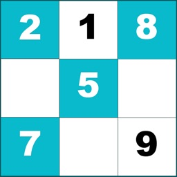 Number Sudoku Puzzle