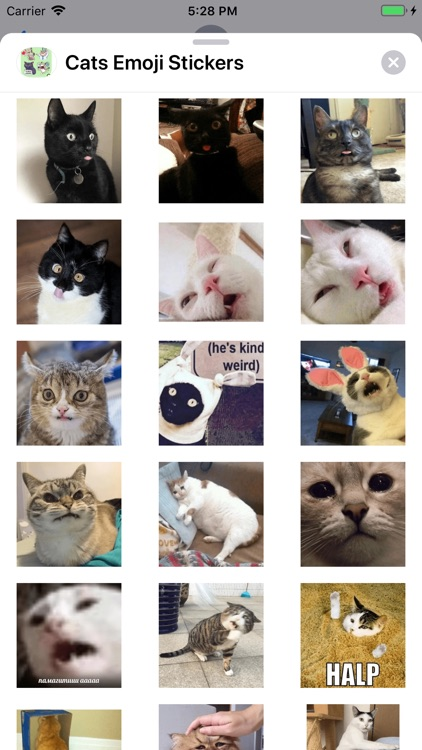 Cats Emoji Stickers