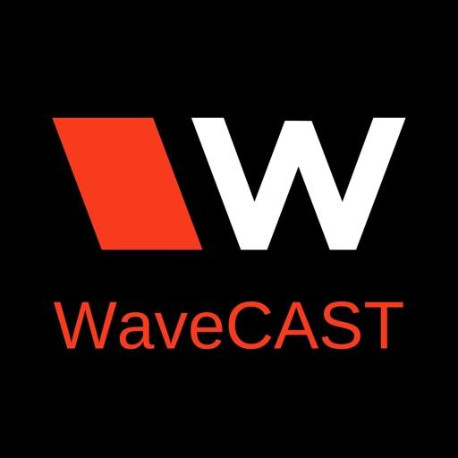WaveCAST Audio Receiver by Williams Sound, LLC