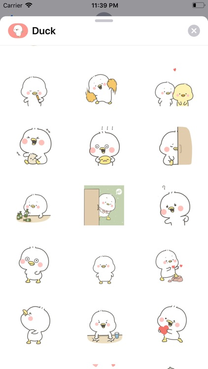 Lovely Duck Animated Stickers screenshot-4