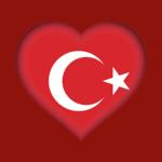 Турецкий словарь - оффлайн на пк