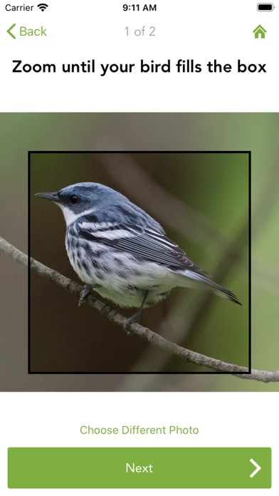Merlin Bird ID by Cornell Labのおすすめ画像7
