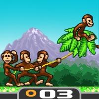 Codes for Monkey Flight Hack