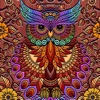 Coloring Owl:Paint Color Cases - iPadアプリ