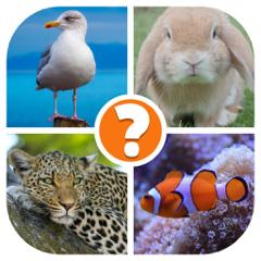Tiere Quiz - Wort Bilder Spiel