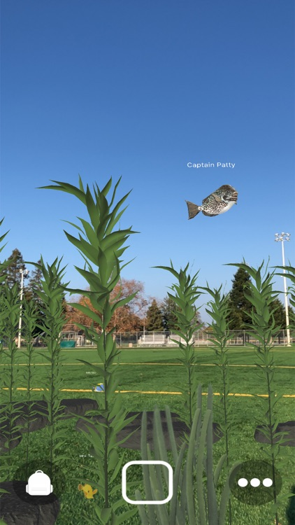 Magic Fish AR screenshot-3