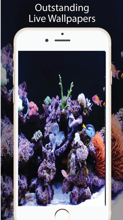Aquarium Live Wallpapers for U