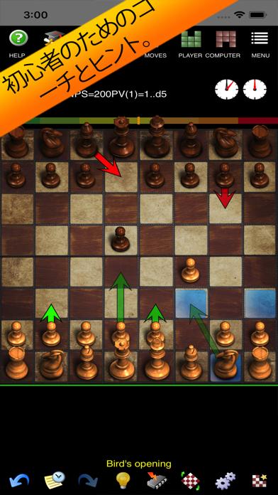 チェスコーチ付き