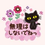 black cat (KIZUKAI)
