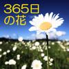 Li Guo - 365日の花 誕生日の花 アートワーク