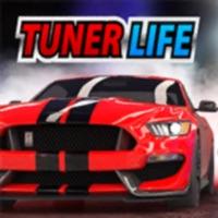 Codes for Tuner Life Racing Online Hack